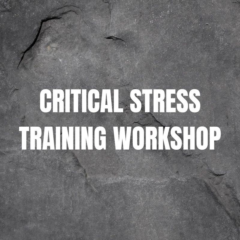 Critical stress training workshop